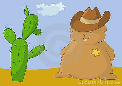 Sheriff-pillow with cactus
