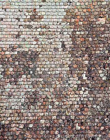 Shingle roof texture