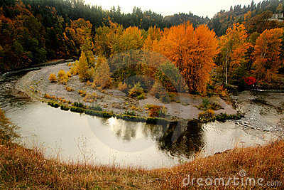 Shiny Autumn River