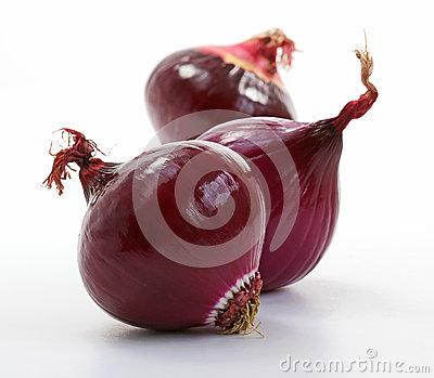 Shiny red onions (allium)