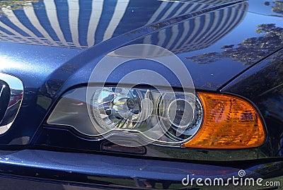 Shiny Sports Car
