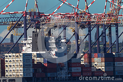Ship Containers Cranes Editorial Photo