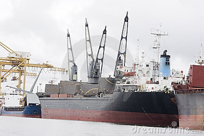 Ship, grain transport