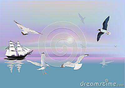 Ship and gulls at sunlight