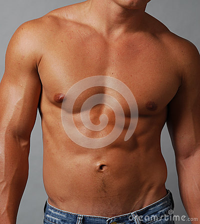 Free Shirtless Muscular Male Chest And Abdomen Stock Photos - 24689403