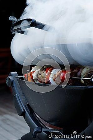 Shish Kabobs on Smoking Grill