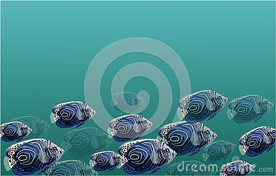 Shoal of exotic fish banner, vector water marine Stock Photo