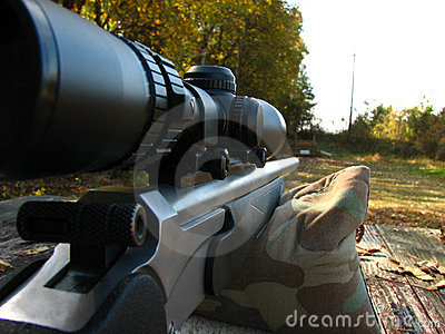 Shooting bench and gun