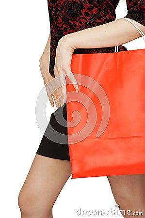 Free Shopping Bag Royalty Free Stock Photography - 4661097