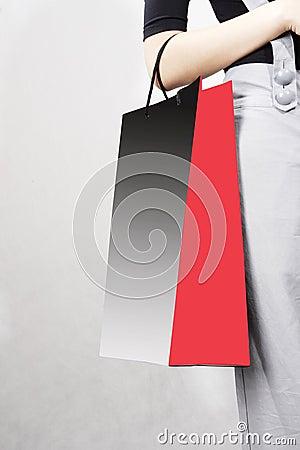 Free Shopping Bag Stock Images - 4701974