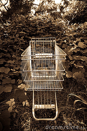 Shopping cart outside in ivy