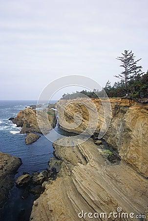 Shore Acres cliffs