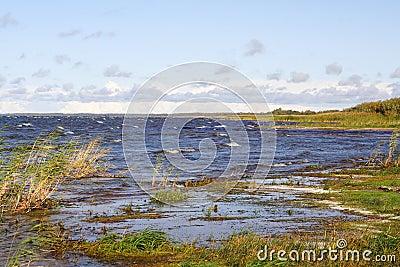 Shore of Lake Peipus