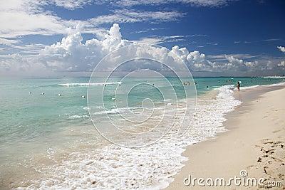 Shore in Miami Beach