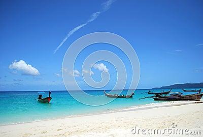 Shore scene