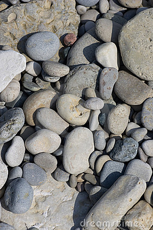 Shore Stone