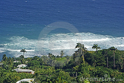Shoreline in the Caribbean