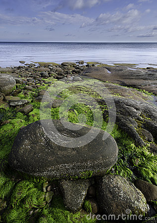 Shoreline längs den Northumberland straiten, Nova Scotia