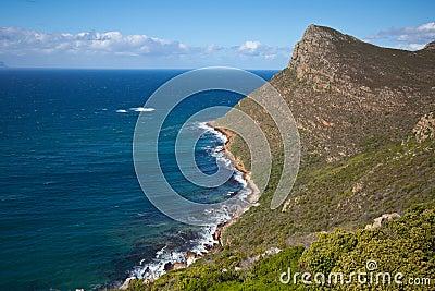 Shoreline near Cape Point, South Africa