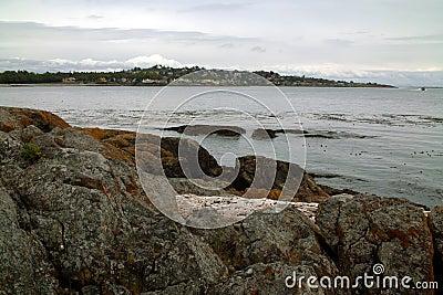 Shoreline near Victoria BC Canada