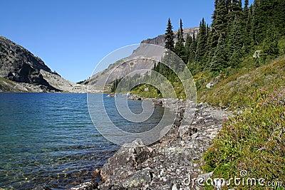 Shoreline of Ring Lake