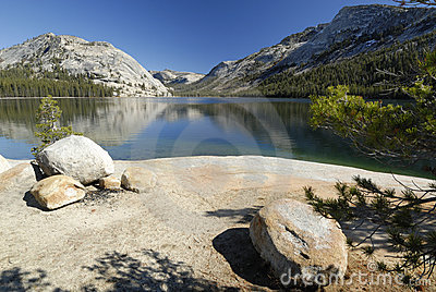 Shoreline of Tenaya Lake in Yosemite