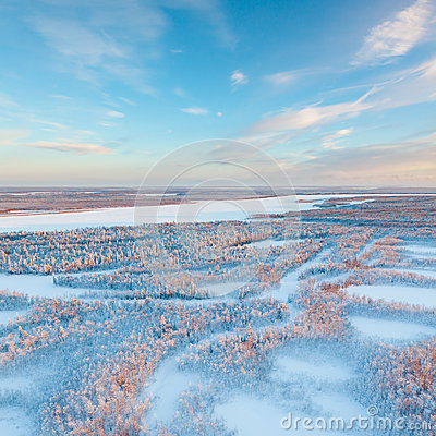 Free Short Winter Day Of Frozen Tundra, Top View Stock Photo - 83532330