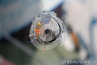 Shot through the glass