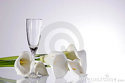 Shot of an isolated wine glass