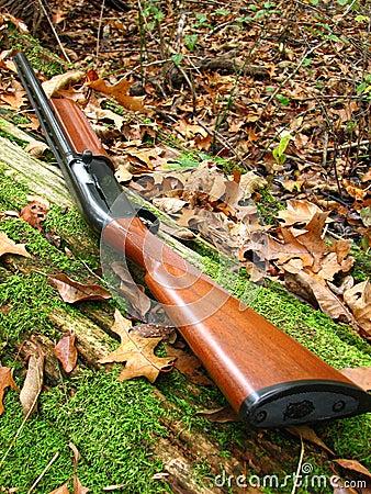 Shotgun, 12 gauge