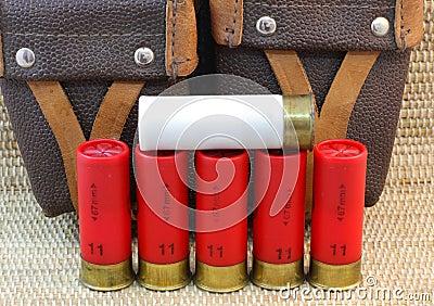 Shotgun cartridges 11 and 12 and hunting bag