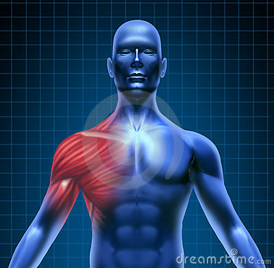 Free Shoulder Muscle Pain Stock Photos - 20553623
