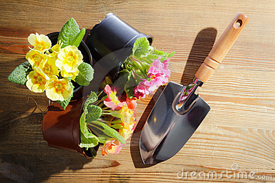 Shovel and cuttings