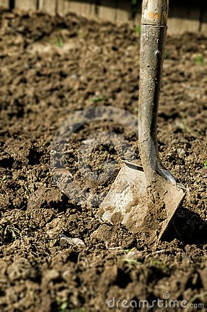 Shovel stuck in dirt