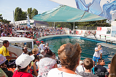 Show at the dolphinarium Editorial Image
