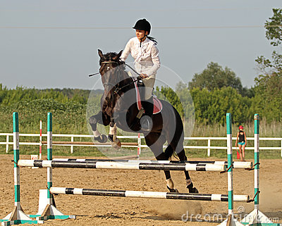 Show jumping Editorial Stock Image