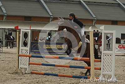 Show Jumping Championship in Prague Editorial Stock Photo