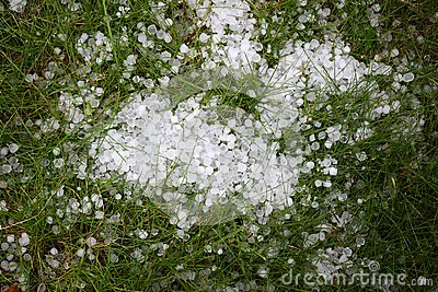 Shower of hail