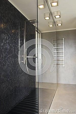 Shower in modern bathroom