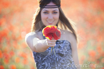 Showing poppies bouquet