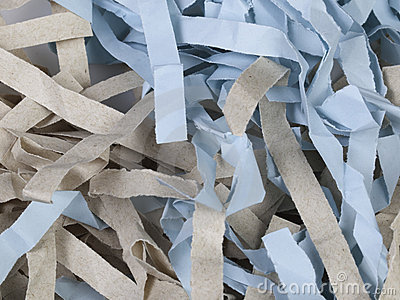 Shredded Colored Paper