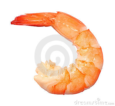 Free Shrimp Stock Photos - 21876773