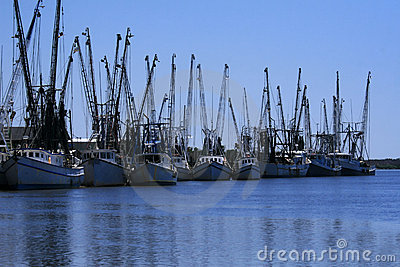 Shrimp boats docked
