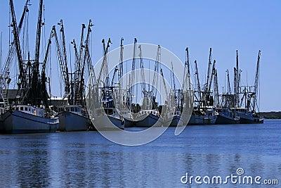 Shrimp boats docked