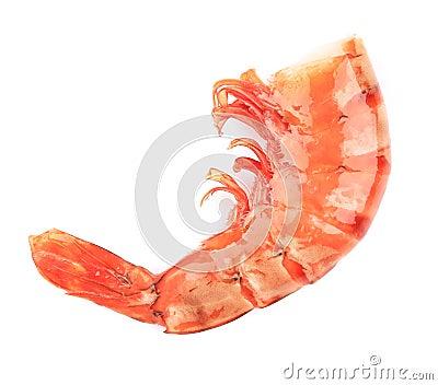 Shrimp close up on white.
