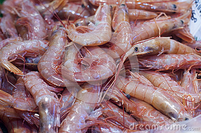 Shrimp in fish market