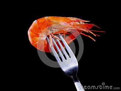 Shrimp on Fork