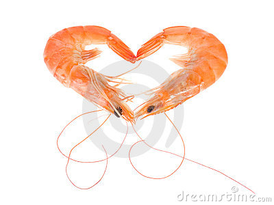 Shrimp - heart