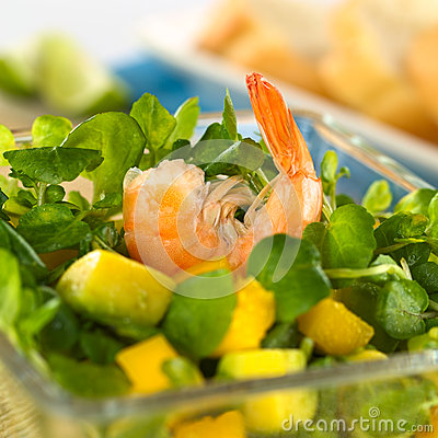 Free Shrimp On Watercress Salad Royalty Free Stock Photo - 24813225