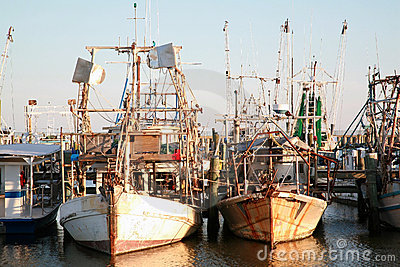 Shrimp and Oyster Fishing Boats
